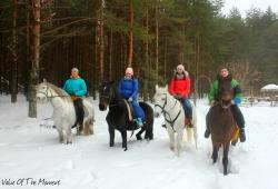Winter-Posad-2