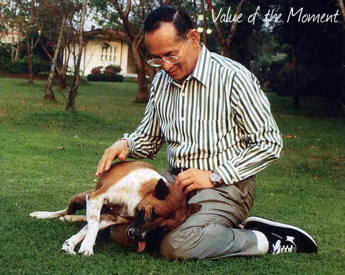 The king Bhumibol Adulyadej with his dog, Thailand, Thai
